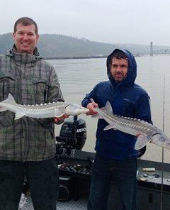 portladnd sturgeon fishing