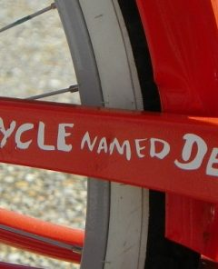 name-your-bike